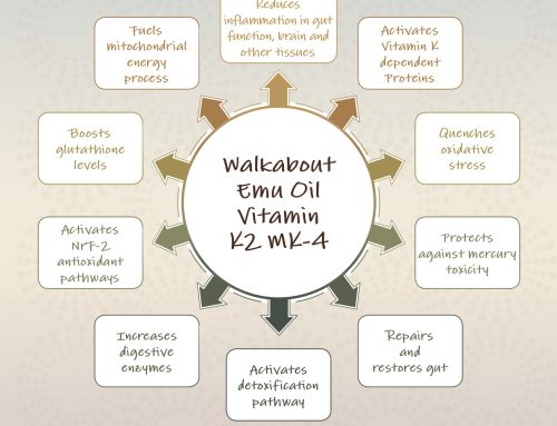 Actions and Benefits of Vitamin K2 MK-4